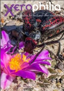 xerophilia cacti magazine issue 11