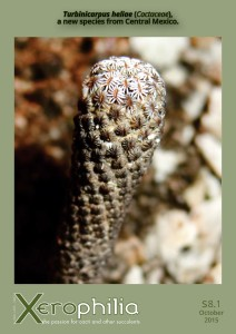 Official first description of Turbinicarpus heliae