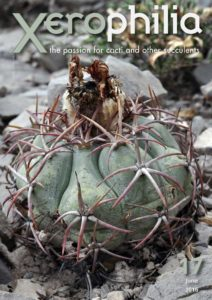 xerophilia cacti magazine issue 17