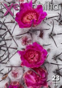 xerophilia cacti magazine issue 23
